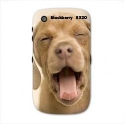 Coque personnalisée pour Blackberry Curve 8520 8530 à l'aide d'une photo